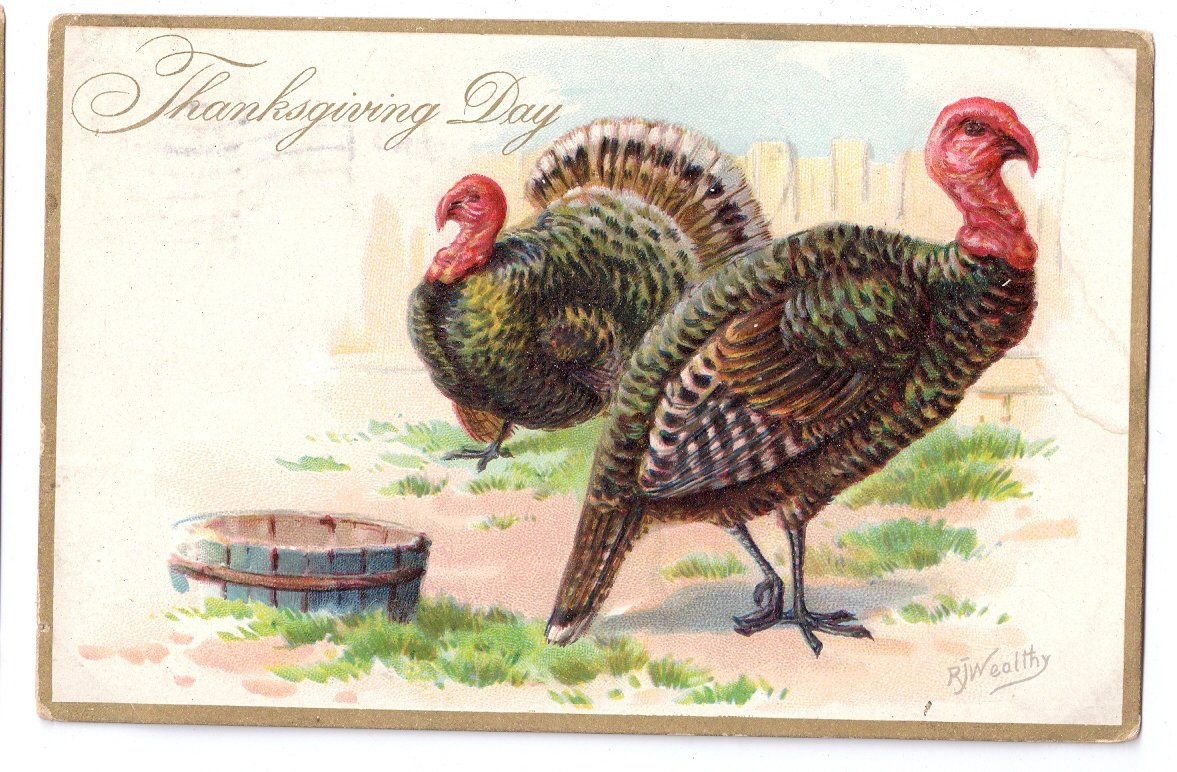 Thanksgiving Turkeys Vintage Embossed Tuck Postcard Artist Signed RJ Wealthy