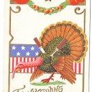 Patriotic Thanksgiving Embossed Postcard Turkey Knife Fork Powls Valley Doane DPO Cancel