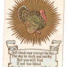 Thanksgiving Turkey Sunburst Poem Postcard Embossed Gold Gilt Vintage 1907 The Rose Co