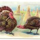 Thanksgiving Turkeys Pulling Wishbone Embossed Vintage Tuck Postcard Series 123