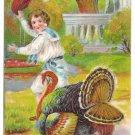 Turkey Chasing Boy in Edwardian Sailor Suit Embossed Vintage 1909 Thanksgiving Postcard
