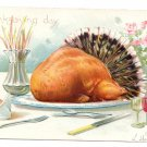 Roast Turkey Tail Feathers Embossed Vintage Tuck Thanksgiving Postcard AS RJ Wealthy