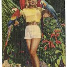 Miami FL Parrot Jungle Pin up Pretty Girl Advertisement Vintage Postcard