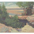 AZ Petrified Forest Natural Bridge 1939 Curteich National Park Linen Postcard