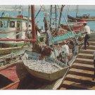 Portugal Algarve Sardine Fishing Boats Vila Real de Santo Antonio 4X6 Postcard