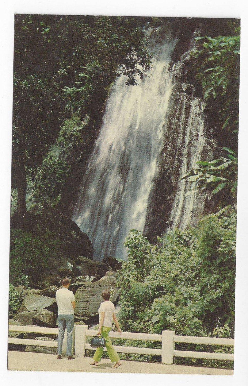 PR Puerto Rico El Yunque National Rain Forest Water Fall Vintage 1969 Postcard