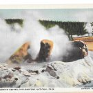 Yellowstone Park WY Grotto Geyser Vtg Haynes Linen Postcard Wyoming