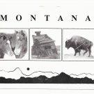 Montana Images Bison Horses Cabin Buffalo Vtg Keyshae Postcard
