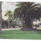 CA Los Angeles Chester Place Palm Tree Mansion Vntg Van Ornum Postcard