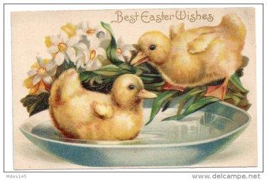 Embossed Easter IAP Postcard Ducklings in a Bowl of Water Narcissus ca. 1910 Germany