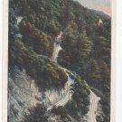 Mt Lowe CA Horse Shoe Curve Vintage Mount Lowe Postcard