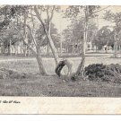 Wildwood NJ Cape May County The W Tree Vintage 1906 UDB World Postcard Co Duplex Cancel