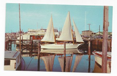 Cape May NJ Marina Sailboat Vintage Curteich 1954 Postcard Boat