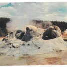 Yellowstone National Park WY Grotto Geyser Upper Basin Vtg Sanborn Postcard