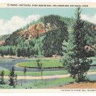 WY Yellowstone National Park Mountain Haynes Vintage Linen Postcard Wyoming