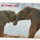 Elephants ne me trompe pas Vintage Animalas Postcard 4X6