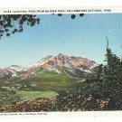 WY Yellowstone Park Electric Peak From Bunsen Peak Haynes Vintage Postcard Wyoming