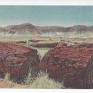 AZ Petrified Forest Agartized Logs 1939 Arizona Curteich Linen Postcard