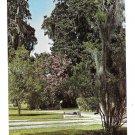 SC Brookgreen Gardens Sculpture Murrells Inlet Pawleys Island  Vtg Postcard 1961