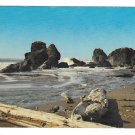 Oregon Coast Boardman State Park North of Brookings Vtg NPR Postcard
