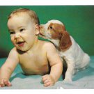 """That's a Good One"" Puppy Nibbling Ear of Laughing Baby Vintage Tichnor Postcard"