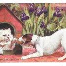 C.T. Howard Cat in Dog House Nine Points of Law Vintage Artist Signed Postcard