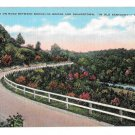 KY Kentucky Road between Brooklyn Bridge Shakertown Vintage Postcard EC Kropp