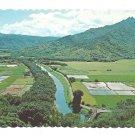 Hawaii Hanalei Valley Taro Fields Island of Kauai Vintage Postcard