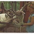 Great Adventure Jackson NJ Amusement Park Tame Reindeer Vntg 1974 Postcard 4x6
