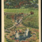 Arkansas Hot Springs National Park AR Miniature Springs 1945 Linen Postcard