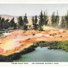 WY Yellowstone National Park Thumb Paint Pots Vtg H H Tammen Wyoming Postcard