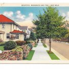 Beautiful Residences Tree Lined Walk US Small Town View Vintage Linen Postcard