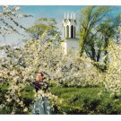Apple Blossom Flowers Nova Scotia Canada Vintage H S Crocker Postcard