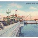 Florida Recreation Pier St. Petersburg FL Pelican Vintage Curteich Linen 1939  Postcard