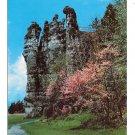 VA Natural Chimneys Redbud Trees Mt Solon Virginia Vintage Postcard