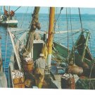 Cape Cod MA Unloading Fish from Fishing Boat Vintage Postcard