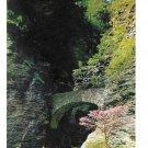 Sentry Bridge Stone Arch Bridge Watkins Glen State Park NY Vintage Postcard