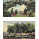 Hershey PA Linen Postcards 2 Different Rose Garden Tree Grove and Rebecca Statue