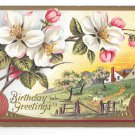 Birthday Greetings Country Scene Apple Blossoms Embossed Gold Gilded Postcard