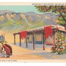 Southwestern Culture Mexican Native American Drying Chili Baking Bread Vintage Linen Postcard