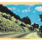 Ohio US Route 40 National Highway Vintage C H Ruth Scenic Photo Postcard