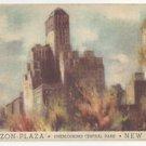 NY Barbizon Plaza Hotel New York City Overlooking Central Park Vintage Postcard