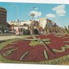 Italy Pescara Flower Clock Abruzzo P Marzari Vintage 4X6 Postcard