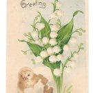 Easter Greeting Chick Lily of the Valley Embossed B W Germany Vintage UDB Postcard