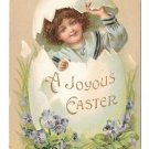 Joyous Easter 1909 Pretty Girl Hatches from Egg Violets Vintage Embossed Postcard
