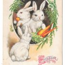 Easter Rabbits Carrots Unsigned Clapsaddle 1926 Vintage Wolf & Co Postcard