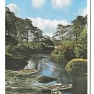Ireland Glengariff Boats in The Blue Pool Vtg Irish Postcard 4X6