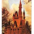 FL Walt Disney World Cinderellas Castle at Dusk Fantasyland Vintage Posstcard