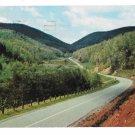 Unicoi Gap Blue Ridge Mts State Hwy 75 Georgi K Rogers Photo 1959 Postcard