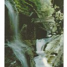 Rainbow Falls Watkins Glen NY Waterfalls Vintage Arthur H Richards Postcard